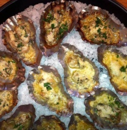 sos oyster shells with grilling oysters