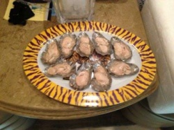 tailgating with sos oyster shells
